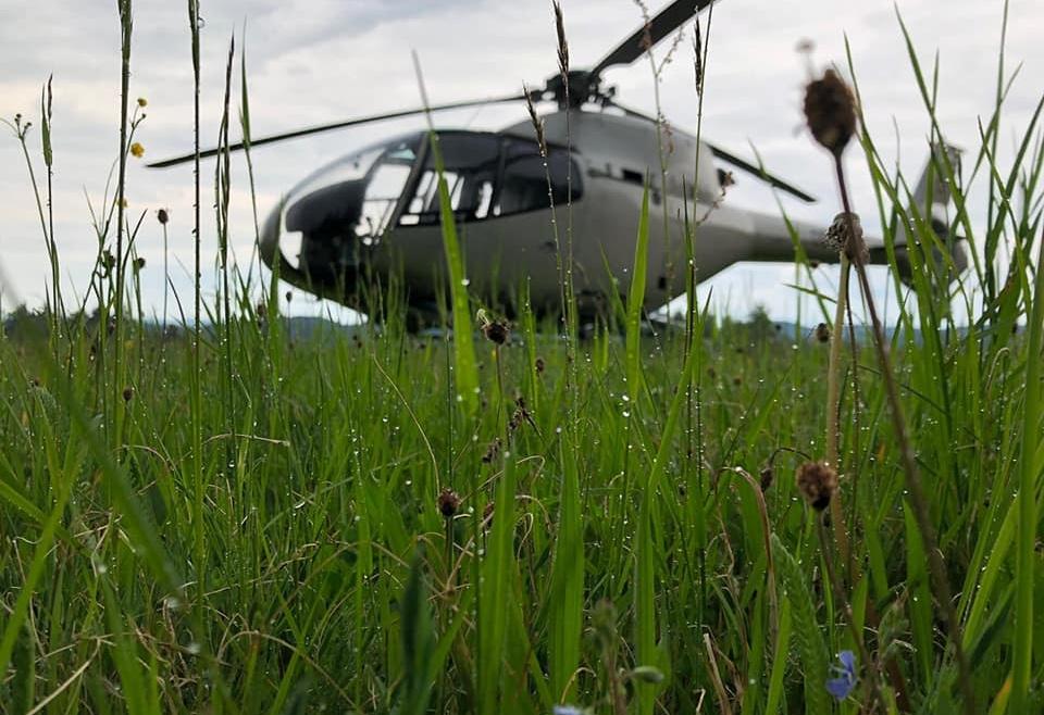 Hubschrauber Landung auf der Bison-Ranch