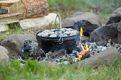Bison Ribs-Dutch oven-easy